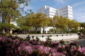 Entering Mayo Clinic