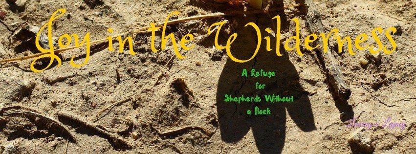 joy in the wilderness pastor