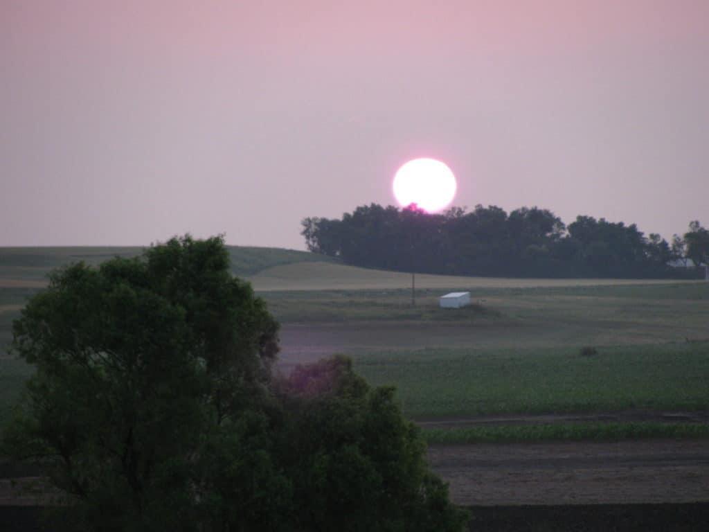 sunrise in the mornings